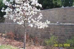 wall_1_82664