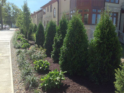 Commercial Landscaping, Avon, OH